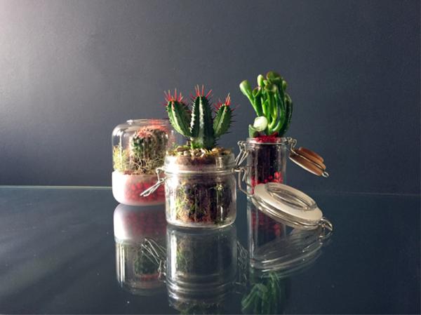 Fabriquez votre objet végétal